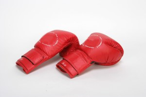 The gloves are off in my next family series.